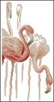 Превью фламингоF-002 (255x480, 94Kb)