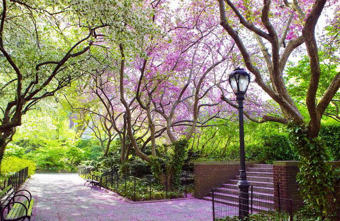 Proshots - Conservatory Garden in Spring, Central Park, New York - Professional Photos (700x455, 778Kb)