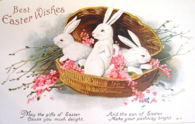 free_vintage_easter_card_three_white_bunnies_in (640x409, 79Kb)
