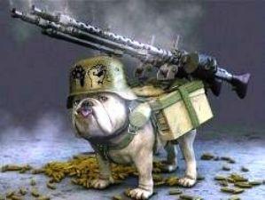 Собака-стрелок (299x225, 15Kb)