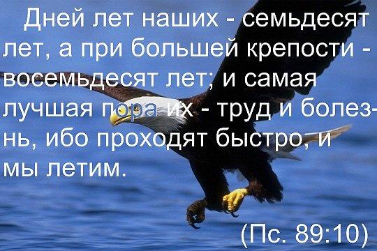 77882841_x_f8c67f76 (540x360, 58Kb)