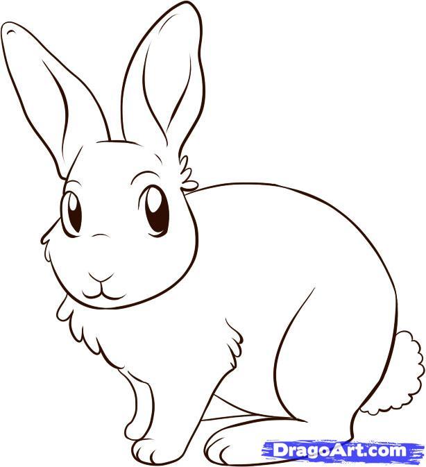 Как рисовать кролика мастер класс.
