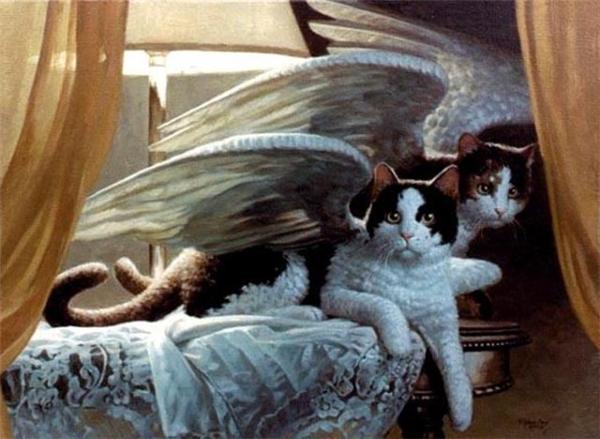 Мышей на планете нужно и кошкам летать