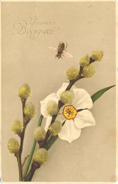 Винтажные открытки к Пасхе сделанные в России 130 (447x700, 33Kb)
