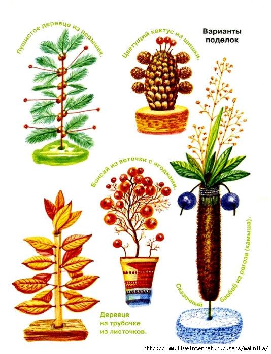 """Аппликация  """"Петушок """" из листьев.  Нескучный гербарий."""