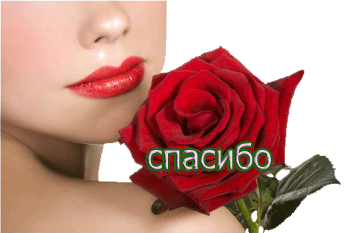 0_87408_ffb9ac10_L (495x328, 160Kb)