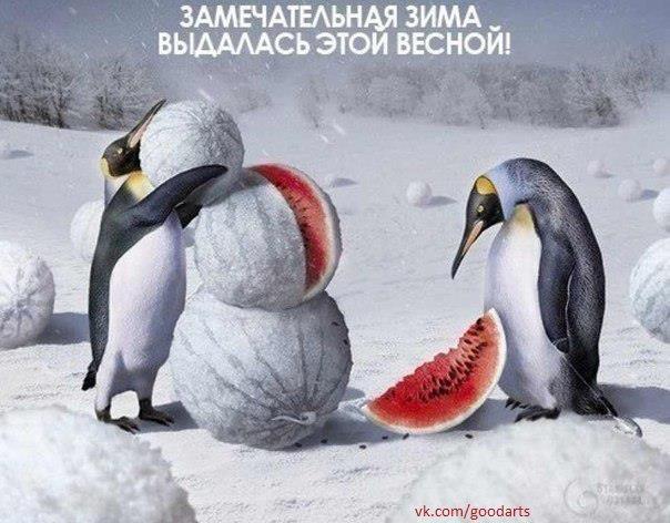 зима (604x472, 50Kb)