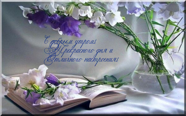http://img0.liveinternet.ru/images/attach/c/5/85/619/85619630_dobroe_utro.jpg