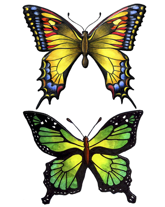 1293231633_55_FT838_jan_2011_kit_butterflies (560x700, 272Kb)