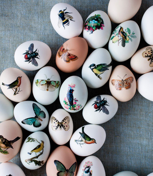 1746943_printedeastereggseastercrafts0412xln (500x575, 94Kb)