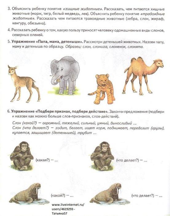 домашнее задание тема животные севера