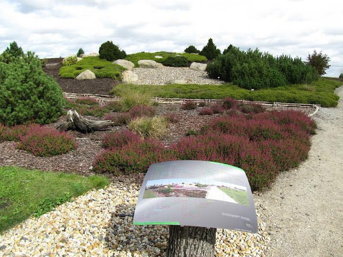 Сад камней Нохтен - Lausitzer Findlingspark Nochten 63178