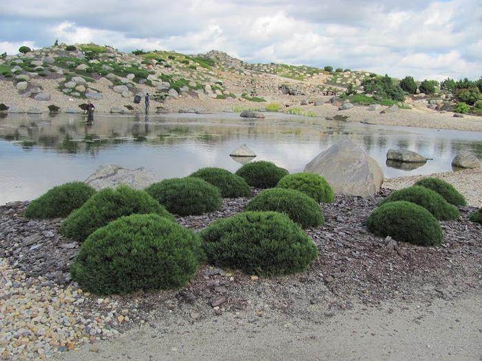 Сад камней Нохтен - Lausitzer Findlingspark Nochten 22022
