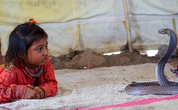 дети укротители змей (600x372, 55Kb)