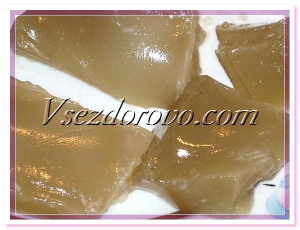 gelatin-shampoo-09 (601x461, 86Kb)