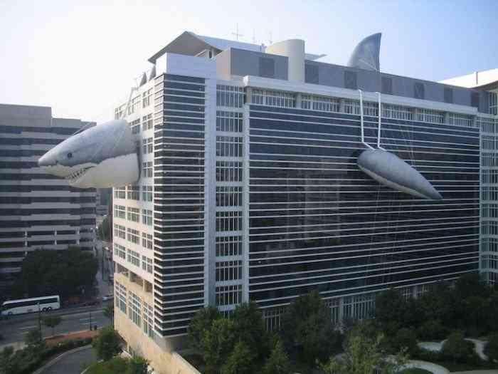 акула на здании канала Discovery,г.Силвер Спринг,США (700x525, 33Kb)