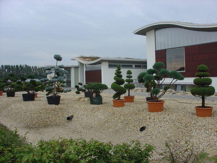 Сад камней Нохтен - Lausitzer Findlingspark Nochten 96845