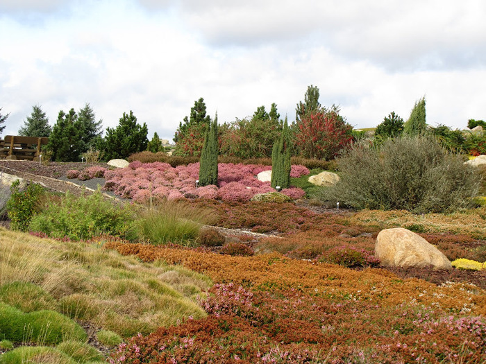 Сад камней Нохтен - Lausitzer Findlingspark Nochten 66550