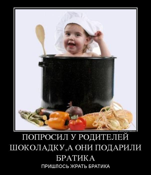 136570_poprosil-u-roditelej-shokoladkua-oni-podarili-bratika_demotivators_ru (604x700, 62Kb)