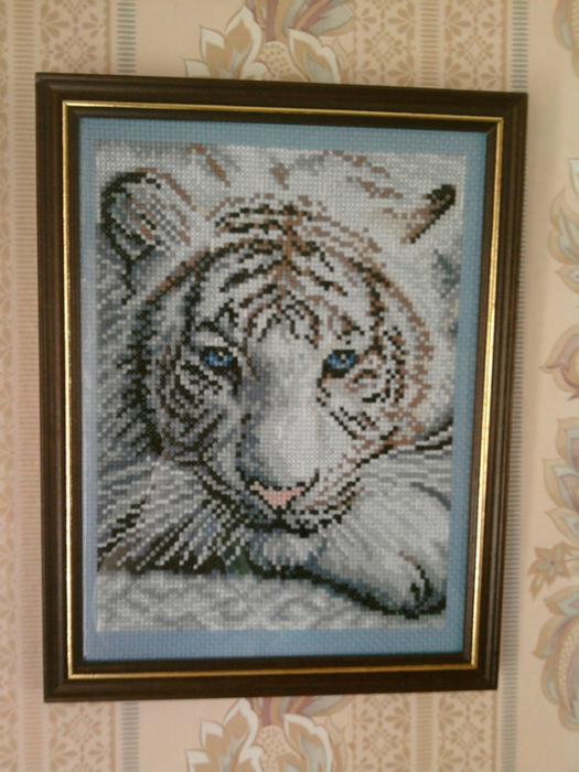 2.тигра (525x700, 465Kb)