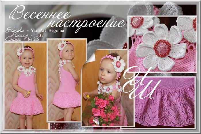 4779731_Rozovoe_plate (700x466
