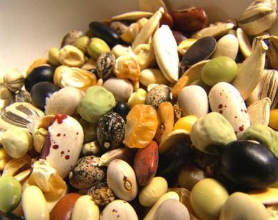 Криохранилище семян в Якутии (400x316, 46Kb)