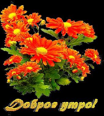картинки_large (340x380, 67Kb)