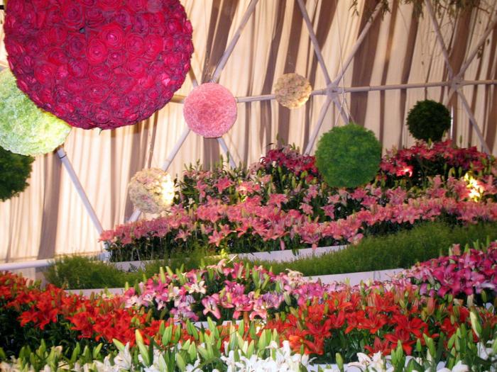 tn_Выставка цветов 029 (700x525, 565Kb)