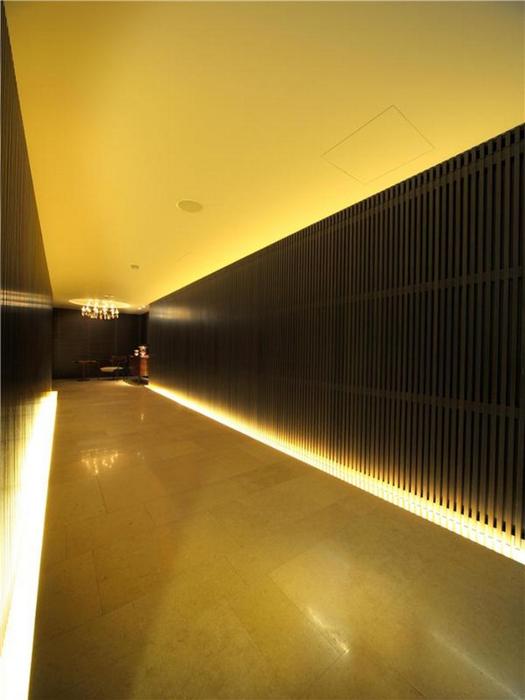 Однокомнатная самая дорогая квартира в мире - The House 17 (525x700, 274Kb)