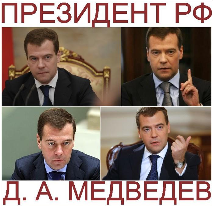 3381179_Medvedev_1_ (700x681, 108Kb)