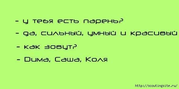 4631441_x_3564840c (586x293, 38Kb)
