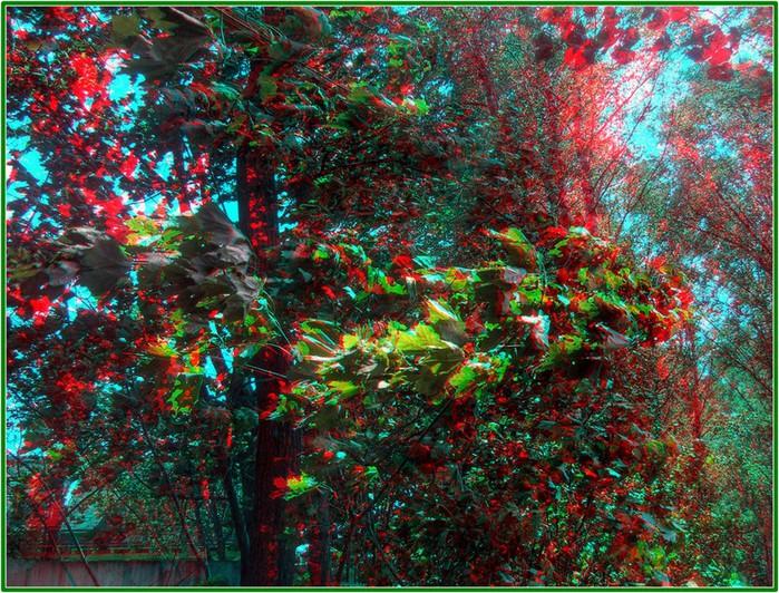 Лучшие стерео-фото пейзажи 9 (700x532, 212Kb)