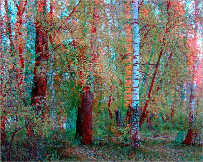 Лучшие стерео-фото пейзажи 75 (700x559, 247Kb)