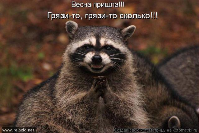 kotomatrix_0371 (640x428, 47Kb)