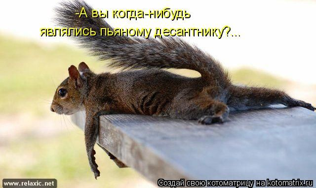 kotomatrix_0823 (640x382, 44Kb)