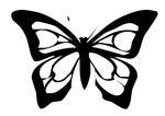 Превью mariposa-n-23-49915 (700x494, 45Kb)