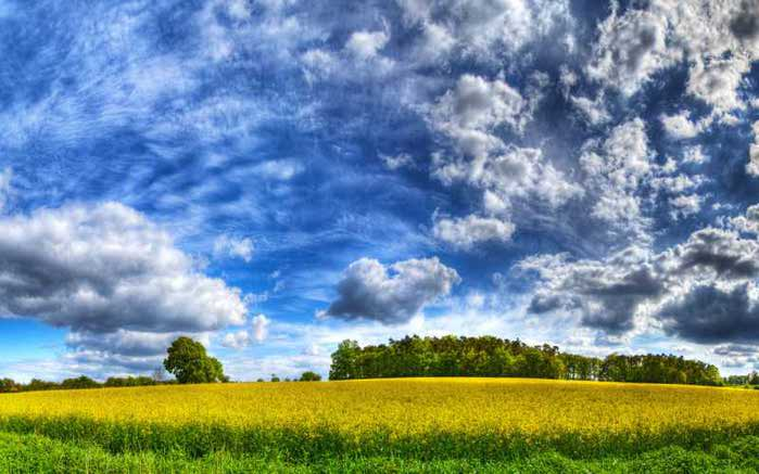 1317811455_nature_seasons_summer_hdr_sky_017902_ (700x437, 42Kb)