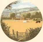 ������ 273 Buttercup Meadow (406x400, 40Kb)