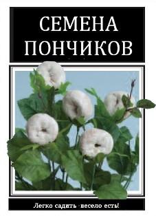 веселый розыгрыш 1/3576489_ponchik1 (227x314, 23Kb)