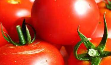 2971058_pomidori_2_1_ (374x221, 10Kb)