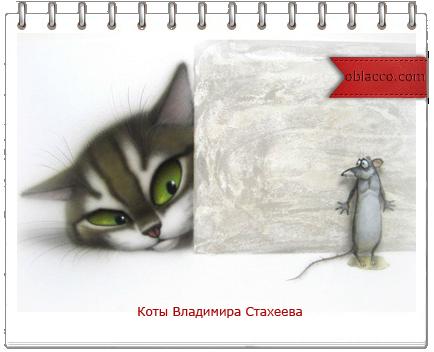 Супер позитивные коты Владимира Стахеева