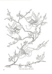 Превью Japanese Floral Patterns and Motifs - 26 (360x512, 49Kb)