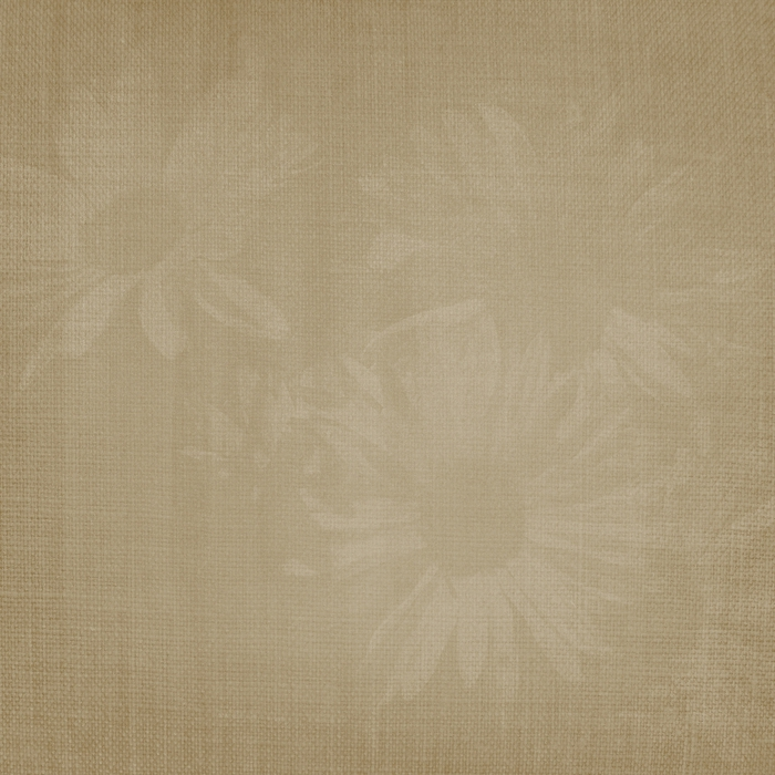 HeatherT-MeTime-Paper7-FadedFlowers (700x700, 324Kb)