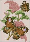 Бабочки.  5 схем.  Вышивка крестом, схемы.