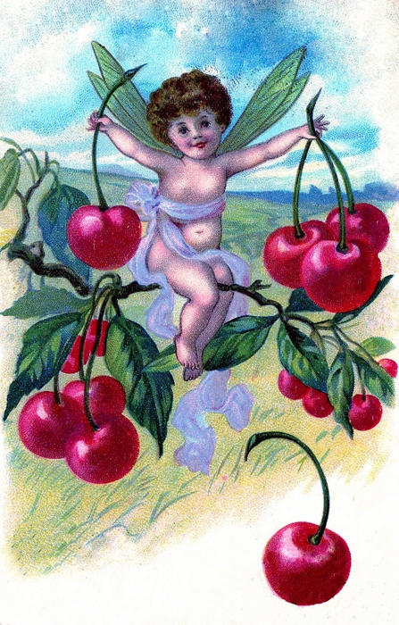 cherry fairy vintage images graphicsfairy007b (447x700, 313Kb)