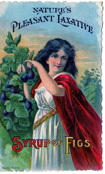 figs-graphicsfairy007a (424x700, 318Kb)