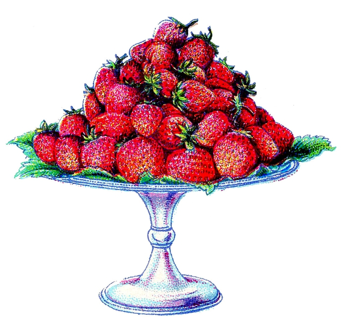 fruit-strawberries-beetons-graphicsfairy004 (700x655, 227Kb)