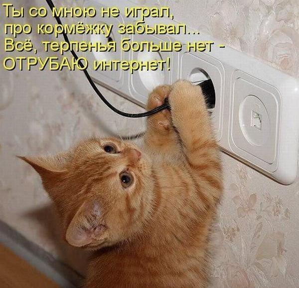 1335136045_201205042319561 (600x579, 64Kb)