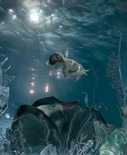 Подводный мир красоты и грации от