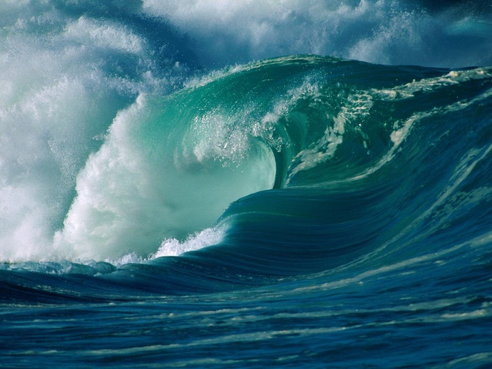 Winter_Surf_Oahu_Hawaii_-_1600x1200_-_ID_12378 (700x525, 113Kb)
